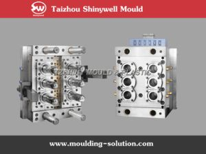 PMMA Preform Mould pictures & photos