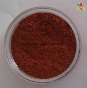Resveratrol Grape Skin Extract Powder