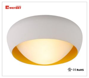 Indoor Modern Lighting LED Aluminium Ceiling Light with Aluminum&Opal Glass pictures & photos