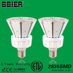 Ce RoHS UL ETL SAA Meanwell Power Supply 80W LED Garden Street Lights Prices pictures & photos