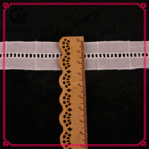 Top Quality Control Hot Sale Lace Trim Wholesale pictures & photos