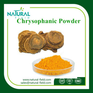 Improve Digestion Rheum Palmatum L. Chrysophanol Rhubarb Extract Powder Chrysophanic Acid, Chrysophanol 98% pictures & photos
