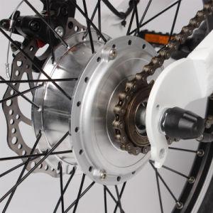 2017 New Folding E Bike/Folding Electric Bike 200W pictures & photos