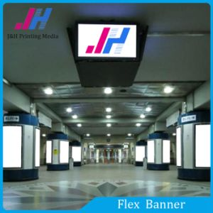 Flex Banner for Big Activity PVC Vinyl Banner pictures & photos