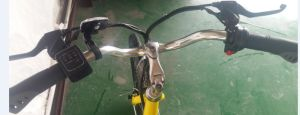 26 Inch Retro Electric Bike/E Bike pictures & photos