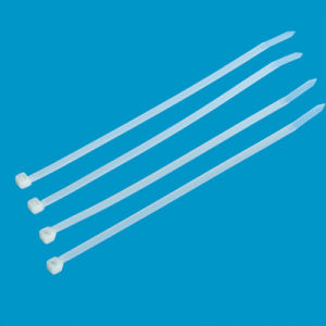 High Quality Self-Locking Nylon Cable Ties (TC005) pictures & photos