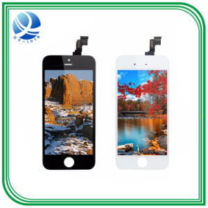 Thonch Screen LCD for iPhone 5s pictures & photos