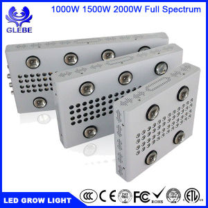 Glebe Dimmable 1000W 1500W 2000W LED Grow Light Full Spectrum Veg and Bloom Dimmers for Indoor Greenhouse Plants pictures & photos