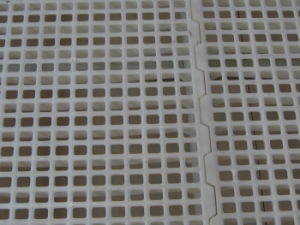Poultry House Use Virgin Material Plastic Slat Floor pictures & photos