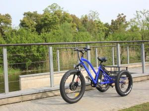 20 Inch 500W Fat Tire Mountain Electric Tricycle for Adult pictures & photos