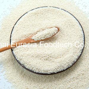 Food Additive Vitamin C/Ascorbic Acid Sustained-Release Pellets pictures & photos