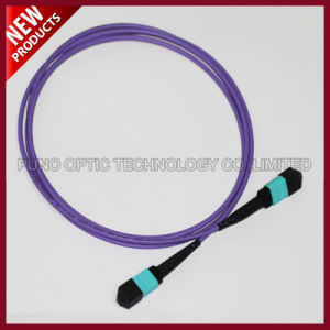 24F Array Fiber Optic MTP MTP Multimode OM3 Trunk Patch Cable pictures & photos