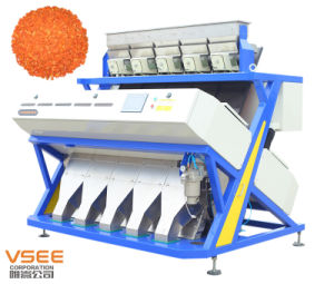 Dehydrated Vegetable Dry Carrot Optical Color Sorter pictures & photos