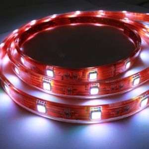Warm White Cool White 5050SMD LED Strip pictures & photos