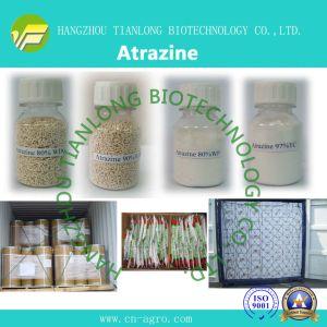 Atrazine (97%TC, 48%WP, 80%WP, 90%WDG, 38%SC, 50%SC) pictures & photos