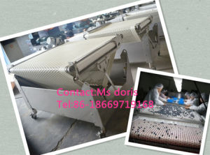 Blueberry Sorter/ Strawberry Sorter/ Bilberry Grading Machine Buberry Grading Machine pictures & photos