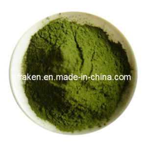Water-Soluble Barley Grass Juice Powder pictures & photos