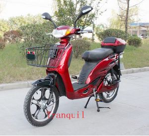CE Electric Scooter With Pedal (AG-PED18)