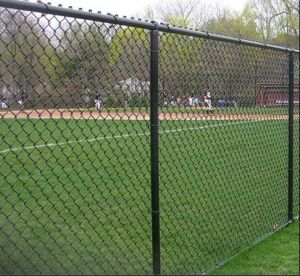 PVC Coated Chain Mesh Fencing pictures & photos