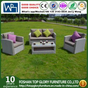 New Design PE Rattan & Aluminum Garden Furniture, Leisure Furniture Outdoor Rattan Sofa (TG-8002) pictures & photos