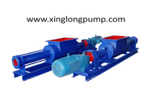Single Screw Pump with a Rectangle Feeding Hopper pictures & photos