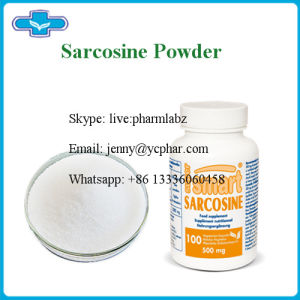 China Supply Sports Use Nutrition Powder Sarcosine