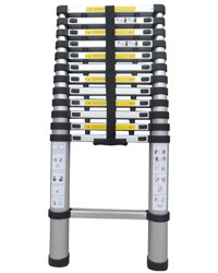 3.8m Ladder (TRK-T380)
