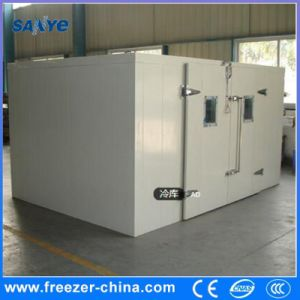 Chinese Manufacturer Combination Blast Freezer Cold Room pictures & photos