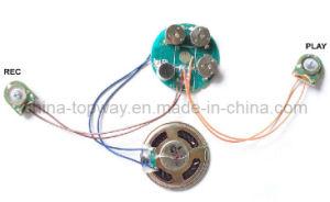 Voice Recording Module (TW-C18RM)