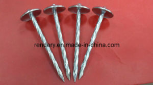 Screw/Umbrella Head Roofing Screw pictures & photos