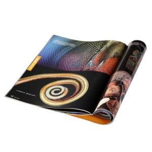 Picture Album Book Printing (GL057)
