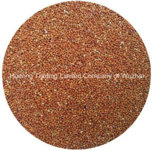 Shanxi Red Millet in Husk