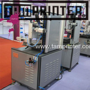 TM-3045 High Efficient High Precision Vertical Plate Screen Printer pictures & photos