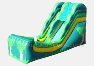 Inflatables, Inflatable Slide, Inflatable Bouncers (B4062) pictures & photos