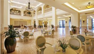 Hotel Furniture Sets/Restaurant Furniture/Modern Dining Room Furniture Sets/Luxury Dining Chair and Table (GLNCTQY-12345) pictures & photos