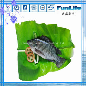 Tilapia Whole Round OEM Frozen Fish Seafood