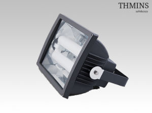 250W Induction Flood Light/Lamp (CYFL031E250W)