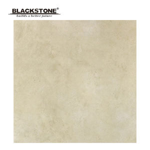 New Design 600X600mm Porcelain Rustic Tiles for Floor (SG6097) pictures & photos