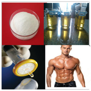 The Most Popular Injectable Steroid Oil Testosterone Enanthate 250~700 Mg/Ml pictures & photos