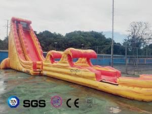 Giant Inflatable Slide for Water Park LG9097 pictures & photos