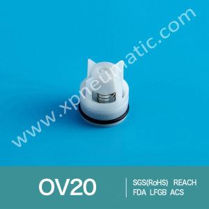 Non Return High Temperature Check Valve Cartridge Ov25 pictures & photos