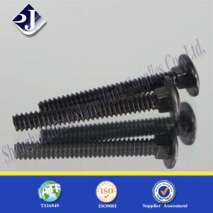 Black Surface Round Head Square Neck Bolt pictures & photos