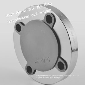 304 316L ANSI Standard Forged Steel Flange Dn10~Dn4200 pictures & photos