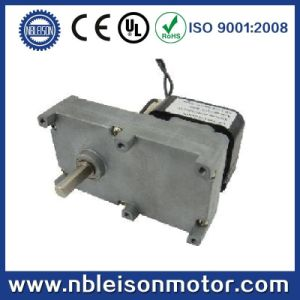 Single Phase AC Shade Pole Gear Motor pictures & photos