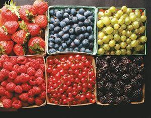 100% Pure Natural Fruit Powder/Acaiberry Powder/Blue Berry Powder/ Juice Powder pictures & photos
