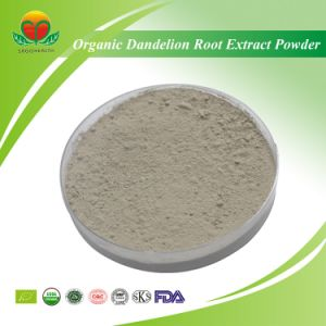 High Quality Organic Dandelion Root Extract Powder pictures & photos