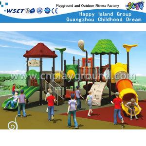 Amusement Park Slide Equipment Children Outdoor Playground HD-Tsg017 pictures & photos