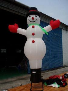 Air Dancer, Snowman Sky Dancer (C1003) pictures & photos