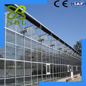 Factory Price Anti Ultraviolet Strong PC Board Greenhouse pictures & photos
