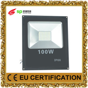 LED Floodlight for Outdoor with Lighting Light (IP66) 20W